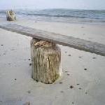Scandlines baut Fährverkehr in der Ostsee aus