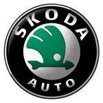 E10-Kraftstoff: Freigabe für fast alle Škoda-Fahrzeuge