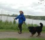 Dogging  an der Ostsee: Nordic Walking mit Hund bringt Herrchen auf Trab
