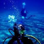 Tauchen auf Formentera: Traumlandschaften unter Wasser