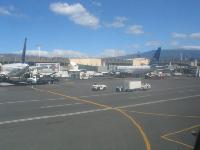 Neue Economy Class Gepäckbestimmungen bei Continental Airlines