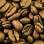 Die Kaffee-Route im Süden von Chiapas