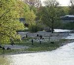 """Deutschland Themenjahr 2009: """"Aktivurlaubsziel Deutschland: Lifestyle, Wandern, Radfahren"""""""