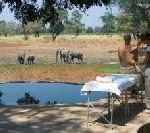Sambia: Activity News – Entspannung mit Aussicht in Nkwali
