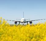 Flughafen Frankfurt: Wasser, Wald und Wiesen erforschen
