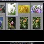 Neues Photoshop Print Plugin von Epson erhöht die Produktivität und Flexibilität im Farbmanagement