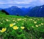 Wörthersee und Bohinj Jezero, Karawanken und Julische Alpen