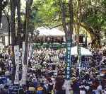 Bunte Paraden und Calypso-Klänge auf Barbados