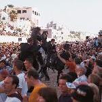 Pferdevorführung in Ciutadella