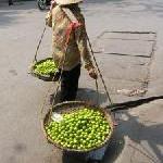 Attraktive Vietnam Sommer Specials bei Asia Select