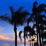 Umfangreichster und aktuellster Individualreiseführer zu Florida
