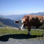 Wildschönau – das Tal der gelebten Traditionen
