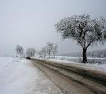 AutoStraßenverkehr empfiehlt: Winterreifen schon jetzt kaufen