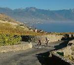 Herbstreisen: tolle Pauschalangebote von Schweiz Tourismus