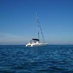 Scansail Yachts International mit neuen Mitsegel-Angeboten: Kap Hoorn und die Antarktis erfüllen Seglerträume