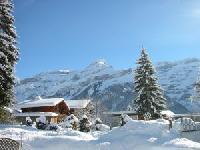 Spurensuche im Schnee – Auf Schneeschuhen den Winter in Inzell entdecken