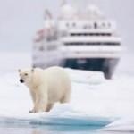 """""""M/V Prince Albert II"""": Arktis-Expeditionen erstmals mit deutschen Lektoren und Crew"""