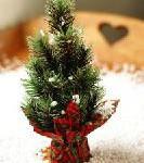 Schnell und günstig zu den schönsten Weihnachtsmärkten in Niedersachsen