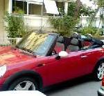 Frühbucher-Angebote: Jetzt Ferienautos in Nordamerika für Sommer 2009 buchen – eine Woche Florida ab 128 Euro