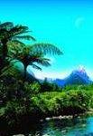 Zu Gast bei Neuseeländern: Bed & Breakfast-Tour von ADAC Reisen mit dem Auto