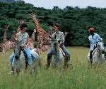 Reiterwochen im Pakamisa Private Game Reserve