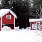 Mit dem Scandlines Winterrabatt-Ticket nach Schweden