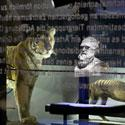 Berliner Naturkundemuseum begeht den 200. Geburtstag von Charles Darwin