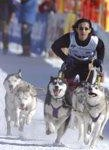 Umweltschutz auf vielen Pfoten – Die klimaneutrale Schlittenhunde-WM in Werfenweng