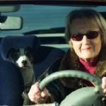 Hohe Sterberate für Senioren auf Europas Straßen
