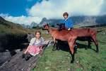 Ferienregion Heidiland: Familienerlebniswelt in der Ostschweiz