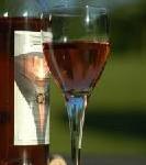 Weintourismus in Frankreich