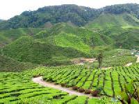Malaysia lädt auf ITB-Stand ein