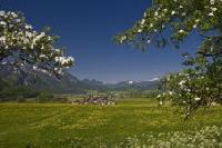 Frühlingsfit mit der Kräuterhex': Inzell sorgt mit Frühjahrsprogramm für neue Vitalität an Leib und Seele