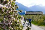 Gut zu Fuß in Lana: Kneipp- und Sonnenaufgangstouren im Apfelparadies