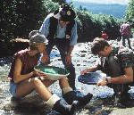 Raurisertal – das goldene Nationalparktal der Alpen hautnah erleben