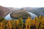 Perfekt für Weinfans: Lukullische Packages von Bacchus Touristic