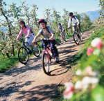 Qualitätsoffensive Bike in Eppan legt einen Gang zu!