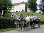 Wanderfrühling in der Lipizzanerheimat: Almrausch, weiße Pferde & Steirer Schmankerln