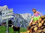 Alpen in Sicht – Urlaub am Bauernhof in Vorarlberg, Tirol und im SalzburgerLand