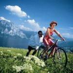 Themenwege: Vom Keltenbaumweg bis zum Urzeitwald