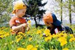 Baby & Kinder Bio-Resort Ulrichshof: Bio-Sommerferien in Europas bestem Familienhotel