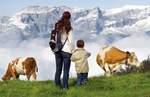 Herbst im Alpbachtal Seenland: Almabtriebe und Kest'nfest