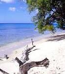 Barbados hoch zu Ross entdecken