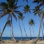 Dominikanische Republik eröffnet Repräsentanz in Wien: