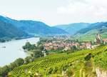 """Herbst in Niederösterreich: Thal Wachau – die """"Ur-Zelle"""" des österreichischen Weinbaus"""