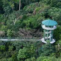Im Rainforest Development Centre den Regenwald erkunden
