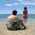 Urlaub: Turteln auf Reisen