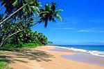 Auf nach Sri Lanka!