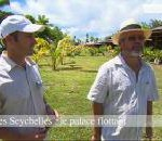 Seychelles on Capital M6 captures French audience