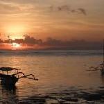 Winterspecials auf Bali: Süßer die Palmen nie klingen!